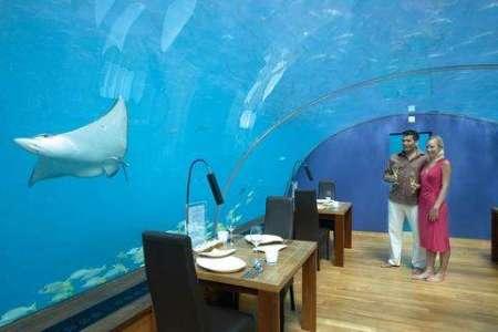 Hoteles y restaurantes bajo el agua ii guinea por descubrir for Conrad maldives precios
